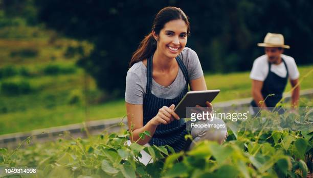 it's the best app for green fingers - agriculture stock pictures, royalty-free photos & images