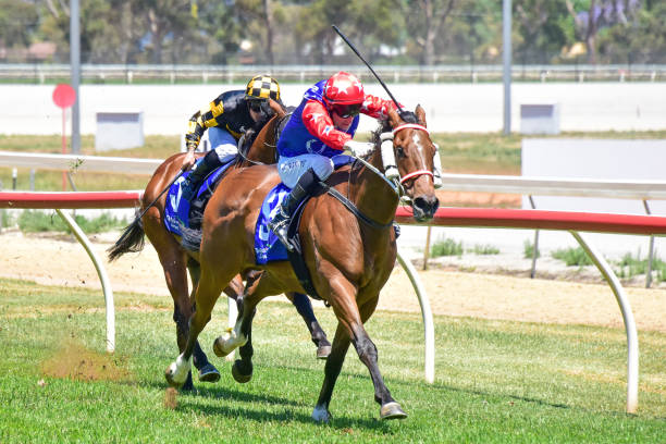 AUS: Swan Hill Jockey Club Race Meeting