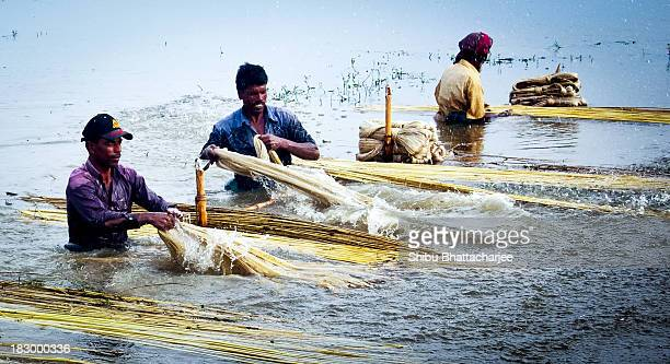 Its very hard work too little water to muscle power wash jute.