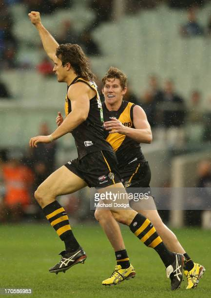 Ivan Maric of the Tigers celebrates his goal with Matthew White during the round 12 AFL match between the Richmond Tigers and the Adelaide Crows at...