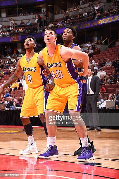 Ivica Zubac of the Los Angeles Lakers boxes out during a preseason game against the Phoenix Suns on October 21 2016 at Honda Center in Anaheim...