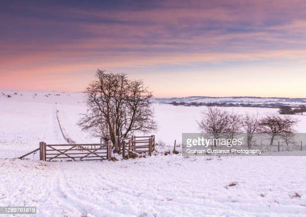 ivinghoe beacon in winter - buckinghamshire stock pictures, royalty-free photos & images