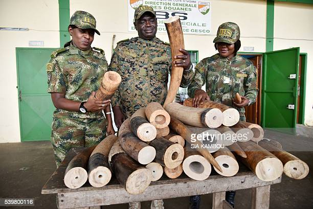 Ivorian customs officers look at seized elephant tusks on June 13 in Abidjan About 150 kilogrammes of elephant tusks coming from Nigeria have been...