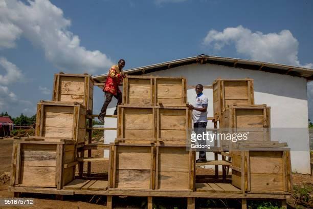 Ivory Coast Cocoa fermentation tanks