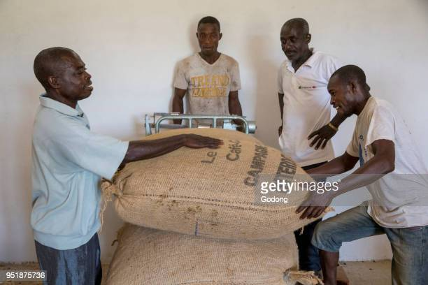 Ivory Coast Producers weighing cocoa bags