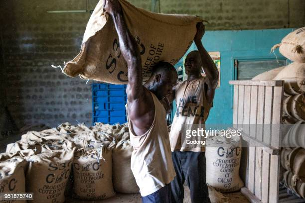 Ivory Coast Workers carrying cocoa bags