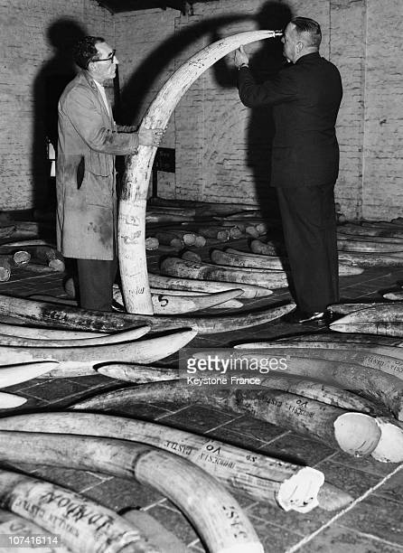 Ivory Sale In London On January 1959