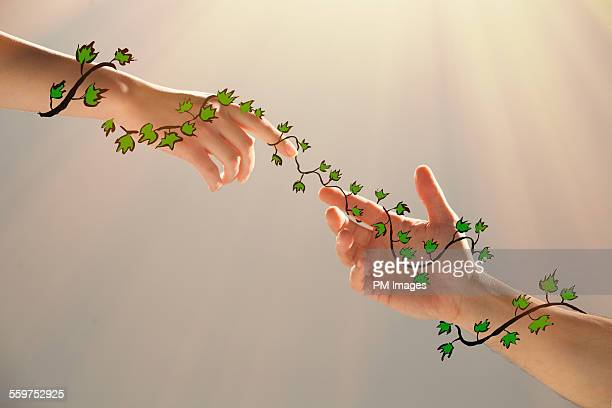 Ivy connecting couple's hands