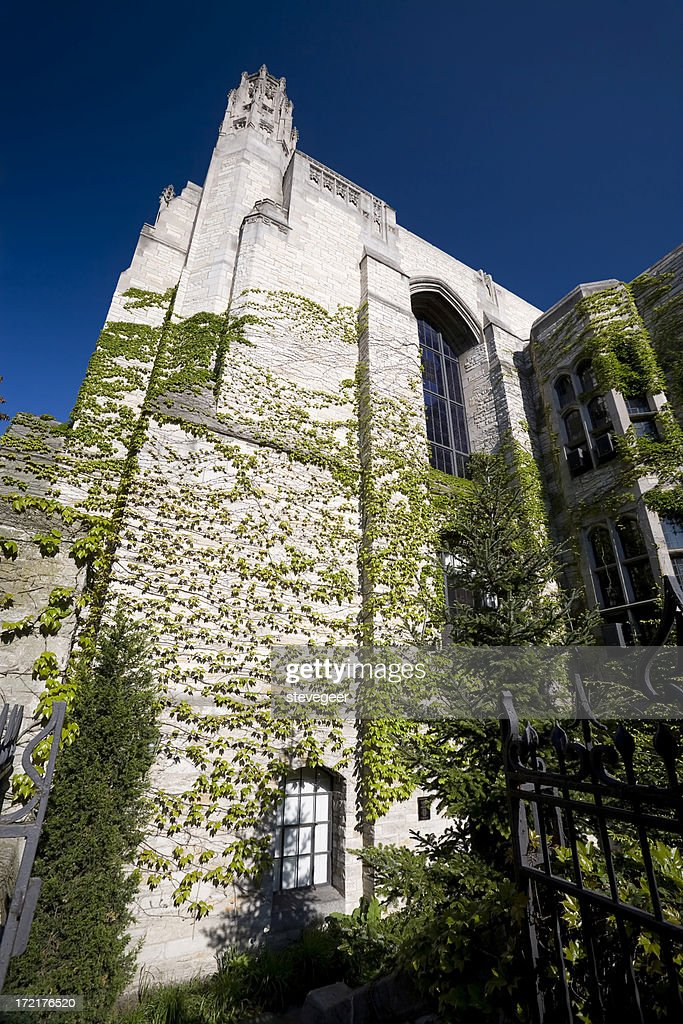Ivy Covered University library : Stock Photo