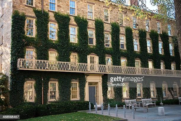 ivy abrangidas as paredes na universidade de princeton - terryfic3d imagens e fotografias de stock