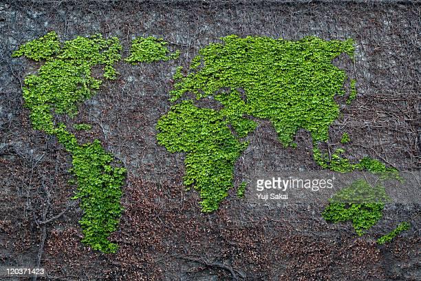 Ivy drawing world map