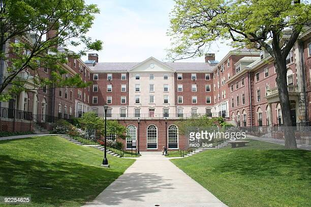 ivy league college - ivy league university stock photos and pictures