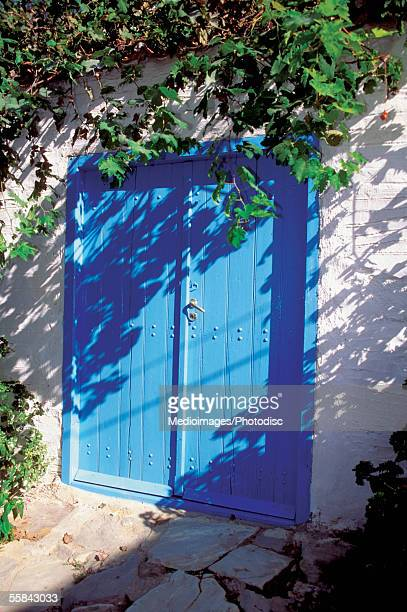 Ivy over a blue wooden door of a house, Skiathos, Greece