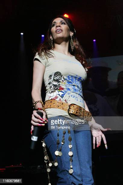 MANDATORY CREDIT Bill Tompkins/Getty Images Ivy Queen appearing at the MEGA 979 Reggaeton concert at Madison Square Gardenn November 24 2005 in New...