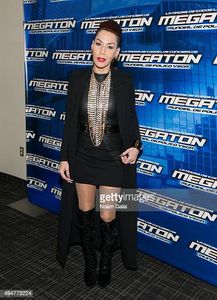 Ivy Queen attends the Mega 979 Megaton concert at Madison Square Garden on October 28 2015 in New York City