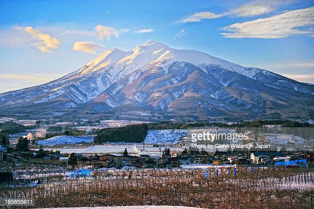 iwaki mountain and apple farms - aomori prefecture stock pictures, royalty-free photos & images