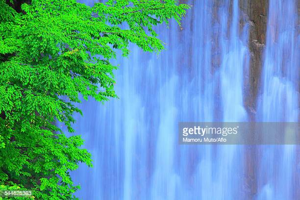 iwate prefecture, japan - land feature stock pictures, royalty-free photos & images