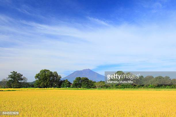 iwate prefecture, japan - 盛岡市 ストックフォトと画像