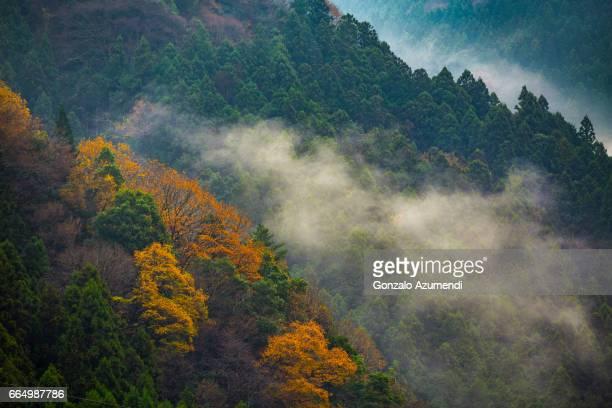 Iya Valley at Shikoku Island.