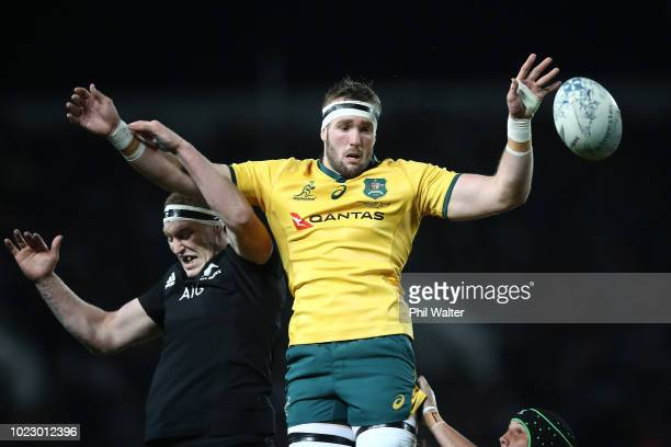 Izack Rodda of the Australian Wallabies takes the ball in the lineout during The Rugby Championship game between the New Zealand All Blacks and the...