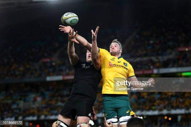 Izack Rodda of the Wallabies takes a lineout ball during The Rugby Championship Bledisloe Cup match between the Australian Wallabies and the New...