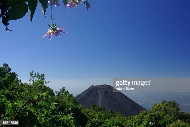 Izalco Volcano from the Mirador