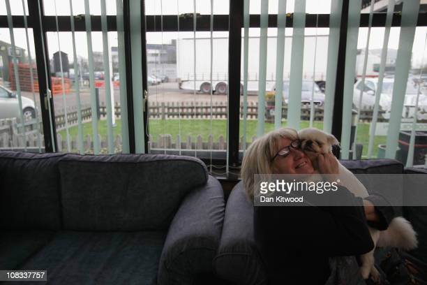 Izzy the dog is reunited with it's owner Mrs Ching at Heathrow Airport's Animal Reception Centre on January 25 2011 in London England Many animals...