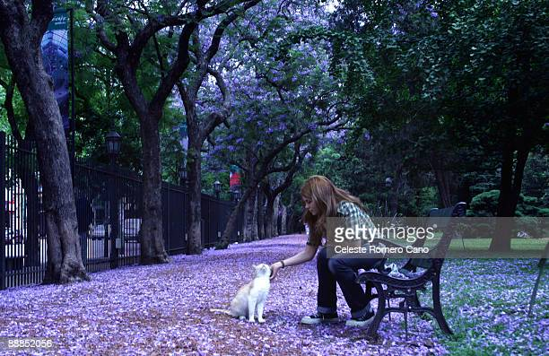 Jacaranda Park with girl and cat