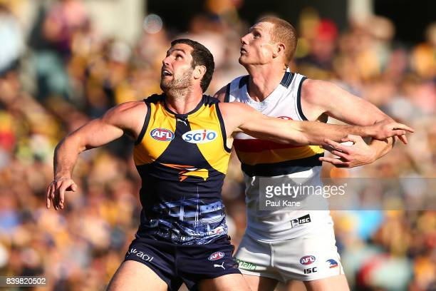 Jack Darling of the Eagles and Sam Jacobs of the Crows contest the ruck during the round 23 AFL match between the West Coast Eagles and the Adelaide...
