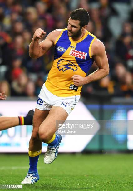 Jack Darling of the Eagles celebrates a goal during the round 10 AFL match between the Adelaide Crows and the West Coast Eagles at Adelaide Oval on...