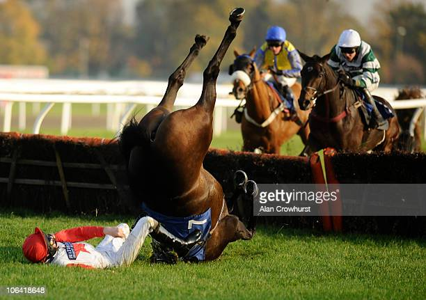 Jack Doyle riding King's Forest fall at the last in The Pertemps Handicap Hurdle Race at Kempton Park racecourse on November 01, 2010 in Sunbury,...