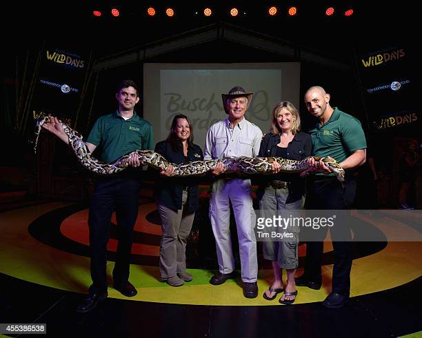 Jack Hanna his wife Suzi and their daughter Julie pose with a Burmese Python and its handlers between shows at Busch Gardens on September 13 2014 in...