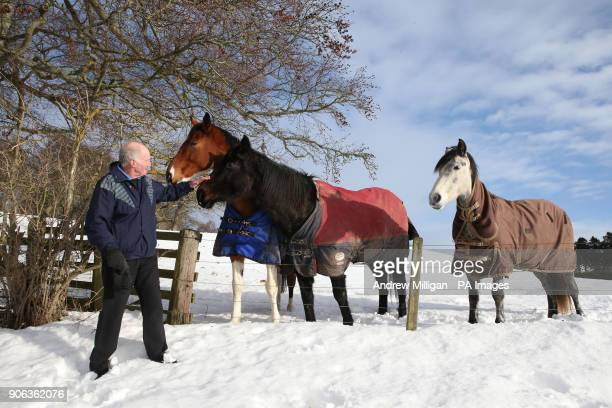 Jack Knox pets horses near Selkirk as police are urging motorists to drive with quotextreme cautionquot amid wintry conditions in Scotland