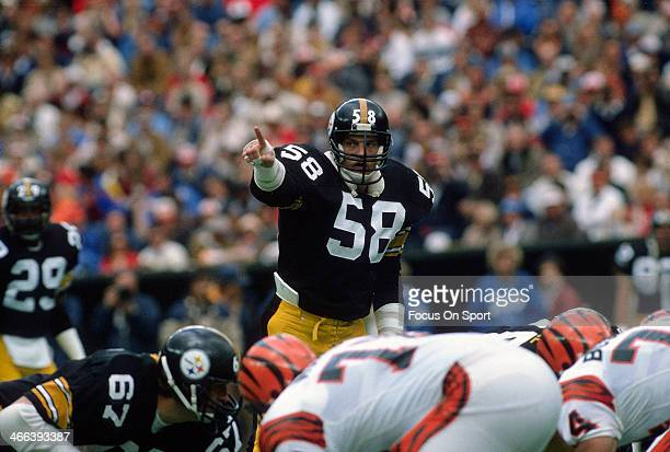 Jack Lambert of the Pittsburgh Steelers in action against the Cincinnati Bengals during an NFL football game December 4 1983 at Three Rivers Stadium...