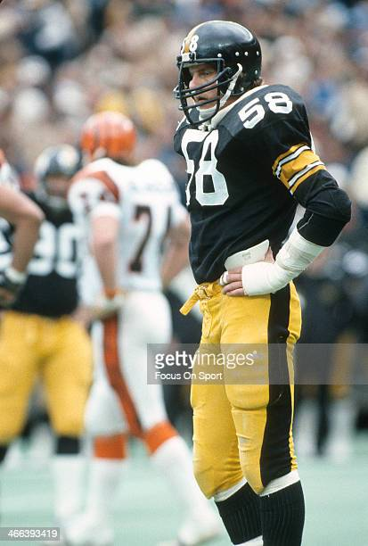 Jack Lambert of the Pittsburgh Steelers looks on against the Cincinnati Bengals during an NFL football game December 4 1983 at Three Rivers Stadium...