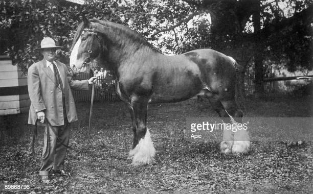 Jack London with its horse has Glen Ellen in California