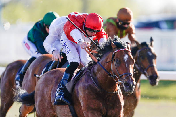 GBR: Chelmsford Races