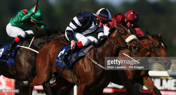 Jack Naylor ridden by Fran Berry on the way to winning the Jockey Club Of Turkey Silver Flash Stakes at Leopardstown Racecourse Dublin