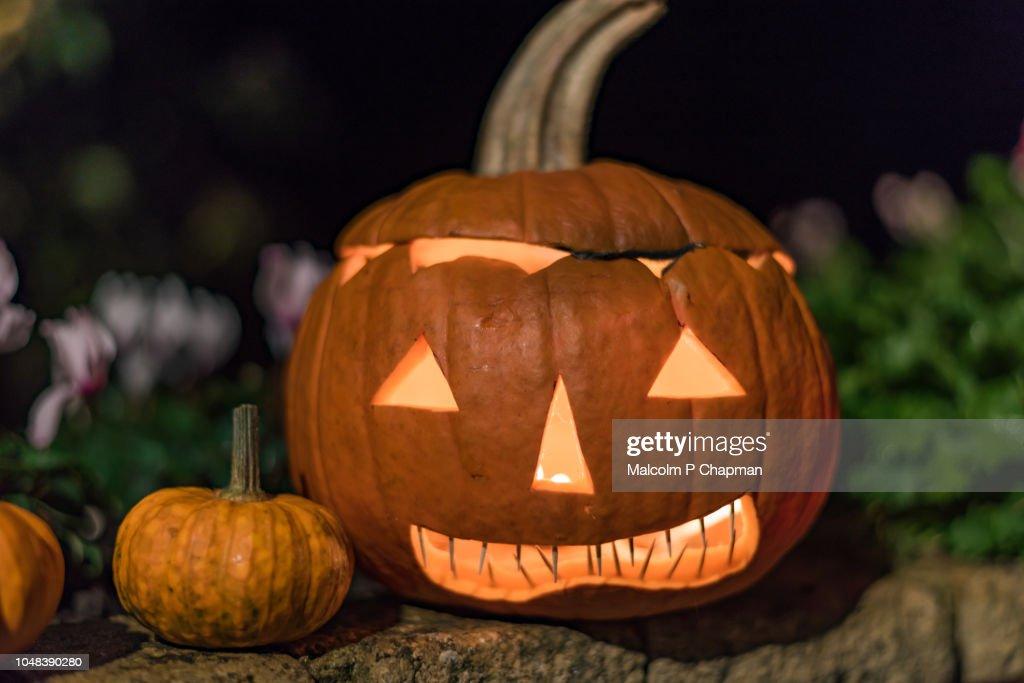 Jack o Lantern carved Halloween pumpkin : Stock Photo