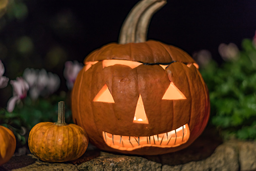 Jack o Lantern carved Halloween pumpkin - gettyimageskorea