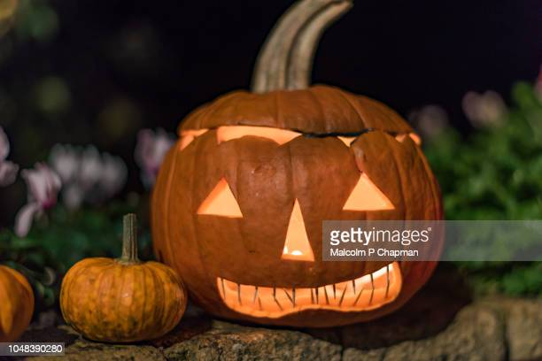 jack o lantern carved halloween pumpkin - halloween lantern stock photos and pictures