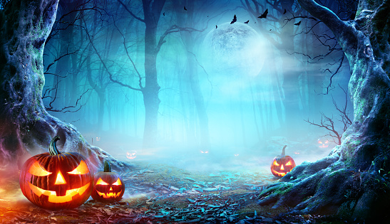 Jack O' Lanterns In Spooky Forest At Moonlight - Halloween 1177824148