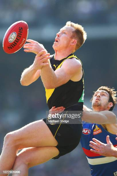 Jack Riewoldt of the Tigers competes for the ball against Easton Wood of the Bulldogs during the round 23 AFL match between the Richmond Tigers and...