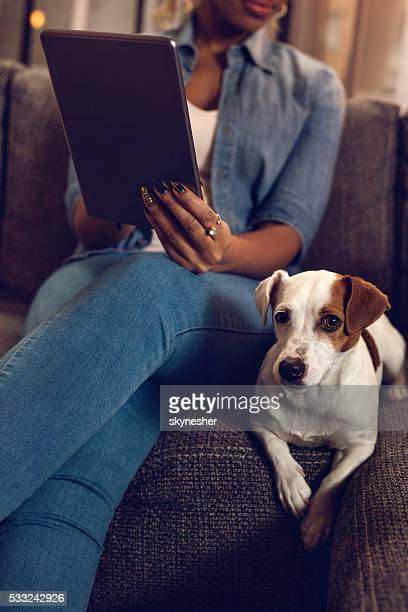 Jack Russell terrier on sofa with unrecognizable African American woman.