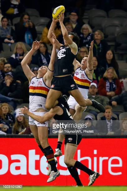 Jack Silvagni of the Blues marks the ball during the round 23 AFL match between the Carlton Blues and the Adelaide Crows at Etihad Stadium on August...