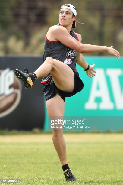 Jack Steele of the Saints kicks the ball during a St Kilda Saints AFL training session at Linen House Oval on November 15 2017 in Melbourne Australia