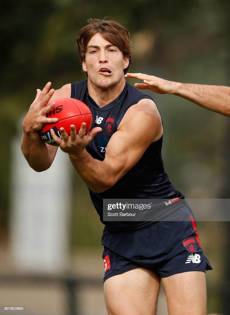 Melbourne Demons Training Session : News Photo