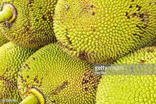 jackfruit in a provincial market, brazil - jackfruit stock photos and pictures