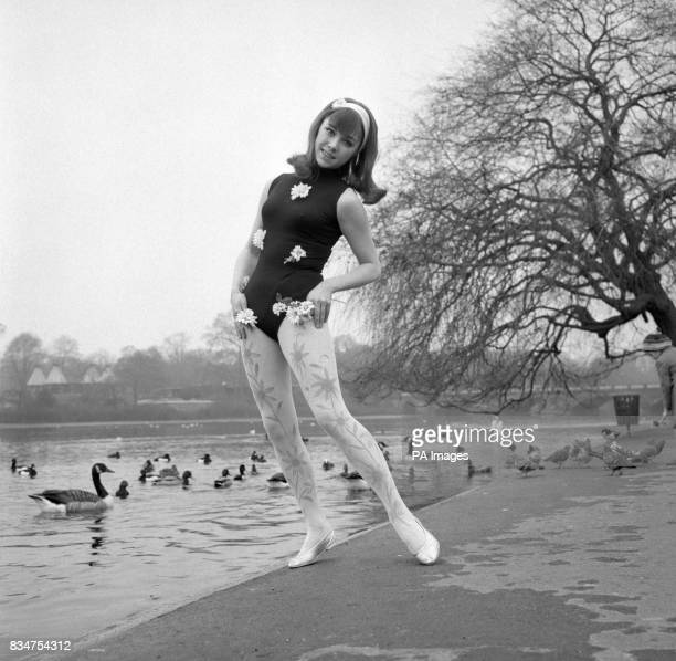 Jackie Gentle models the newest fashion fad of super soft seethrough 'Soflons' tights called 'Lovely Lady' they are available in different colours...