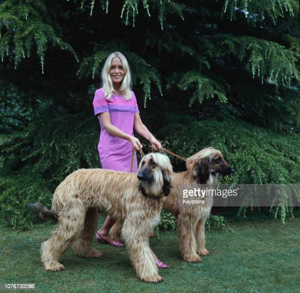 Jackie Irving the wife of English pop singer Adam Faith at home with two Afghan hounds UK circa 1970